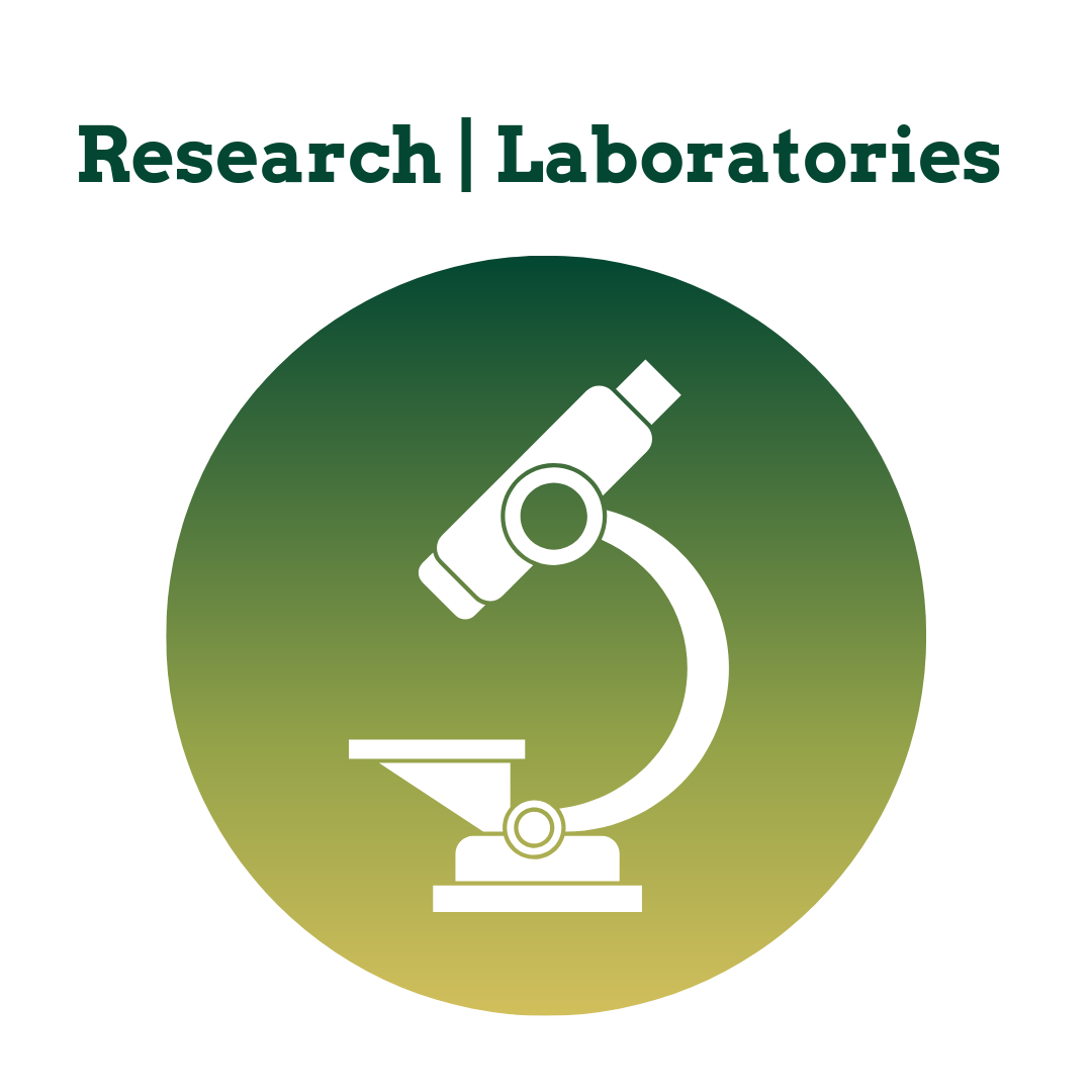 BBM_Research